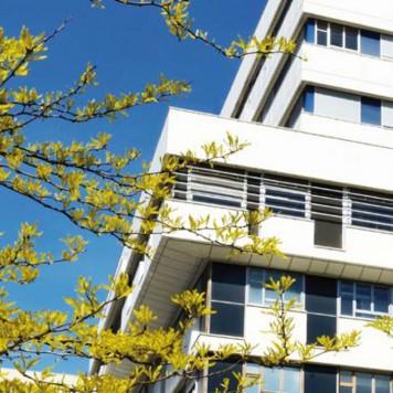 Photo - Assistance Publique - Hôpitaux de Paris - 1